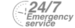 24/7 Emergency Service Pest Control in Ladbroke Grove, North Kensington, W10. Call Now! 020 8166 9746
